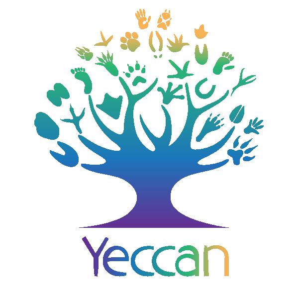 Yeccan